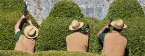 marqueyssac jardinier