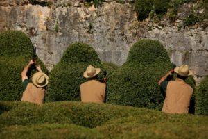 marqueyssac-jardins-taille buis